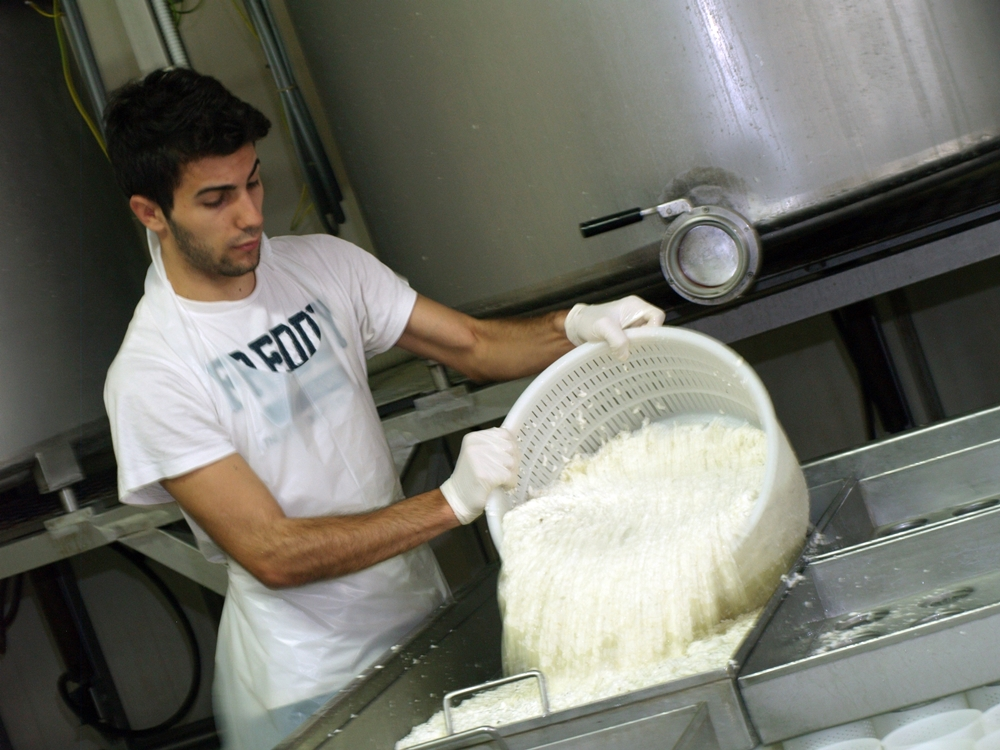 Gli artigiani del latte caseificio facchini - Artigiani del mobile ...